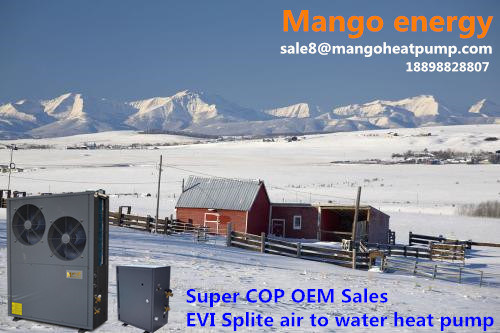 Super Cop OEM Sales 8kw 10kw 15kw 20kw New Energy Evi Air to Water Heat Pump